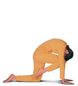 Sabato 29 febbraio -Seminario di Yoga: Rilassamento collo, braccia, polsi, mani.